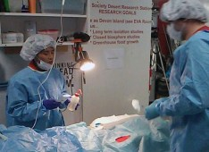 telesurgerytraining